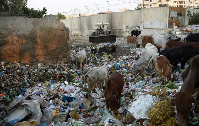 Pakistan's Karachi, a megacity of 20-25 million people, produces roughly 12,000 tonnes of trash daily