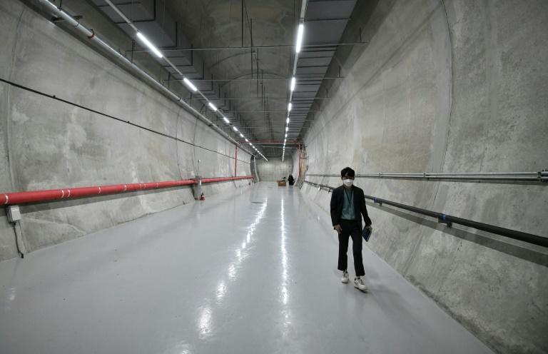 """The Baekdudaegan National Arboretum Seed Vault Centre preserves nearly 100,000 seeds from 4,751 different wild plant species to ensure they are not lost to """"apocalyptic events"""""""
