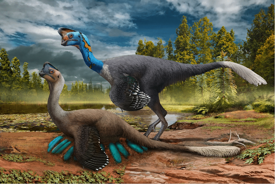 An illustrated image of two dinosaurs, one nesting