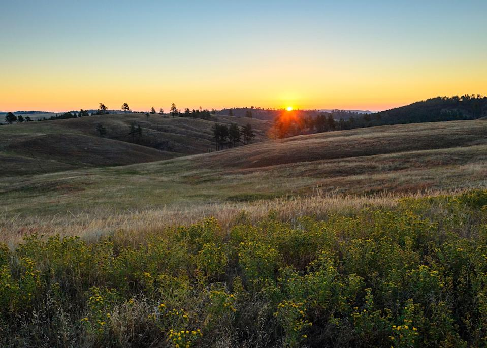 <p><strong>Best camping in South Dakota:</strong> Elk Mountain Campground, Wind Cave National Park</p> <p>Though the park is famous for its enormous caverns full of boxwork and cave popcorn rock formations, Wind Cave is also extremely biodiverse. After settling in under a grove of ponderosa pines, search for bison herds on a scenic drive, or take in the rolling, golden hills on the Lookout Point Trail.</p>