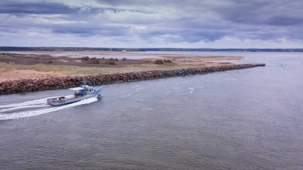 DFO says officials with the Small Craft Harbour program will do soundings to confirm the depths of the channel near Savage Harbour when the weather suits. (Shane Hennessey/CBC - image credit)