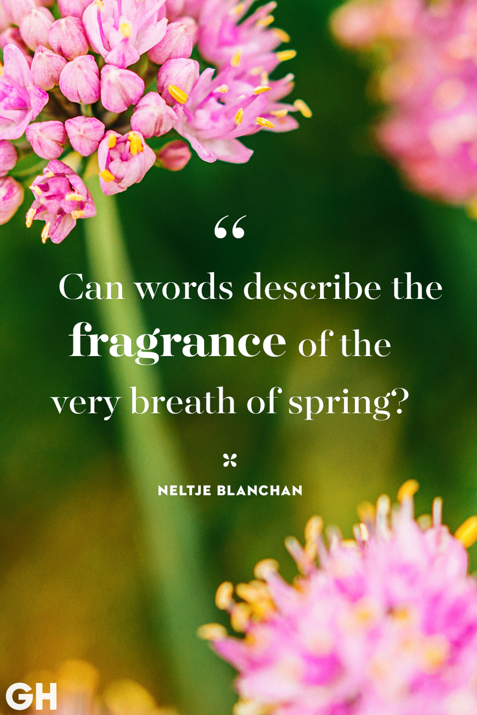 <p>Can words describe the fragrance of the very breath of spring?</p>
