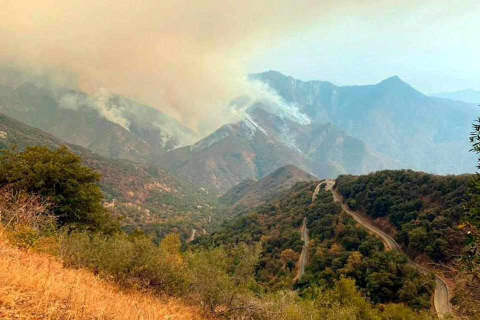 Smoke plumes rise from the Paradise Fire in Sequoia National Park in the southern Sierra Nevada (KNP Complex Fire Incident Command via AP)