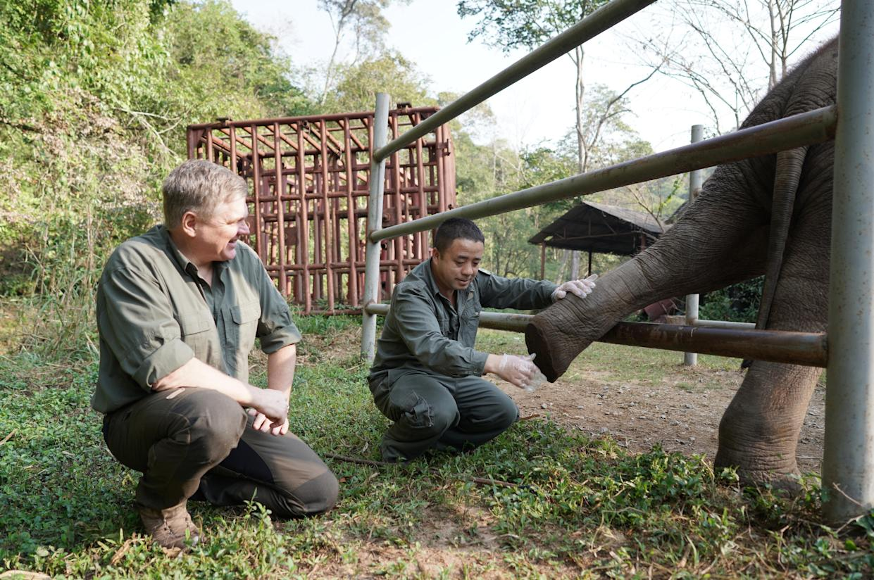 Ray Mears with elephant conservationists, Dr Bao Mingwei and Cockroach the Elephant. (ITV/Tin Can Island)