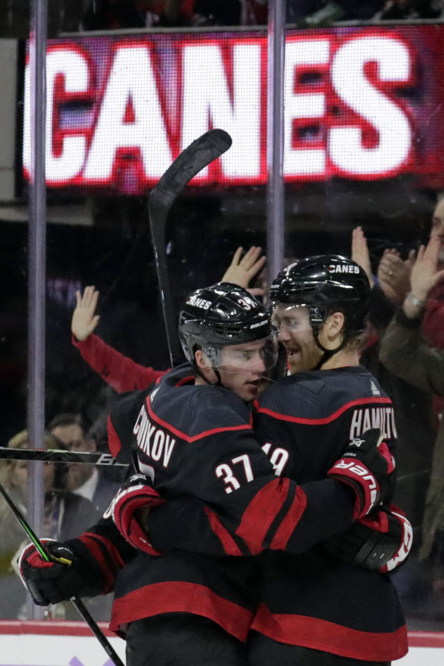 Carolina Hurricanes' Dougie Hamilton (19) celebrates his goal with Andrei Svechnikov (37), of Russia, during the second period of an NHL hockey game against the Florida Panthers in Raleigh, N.C., Saturday, Nov. 23, 2019. (AP Photo/Chris Seward)