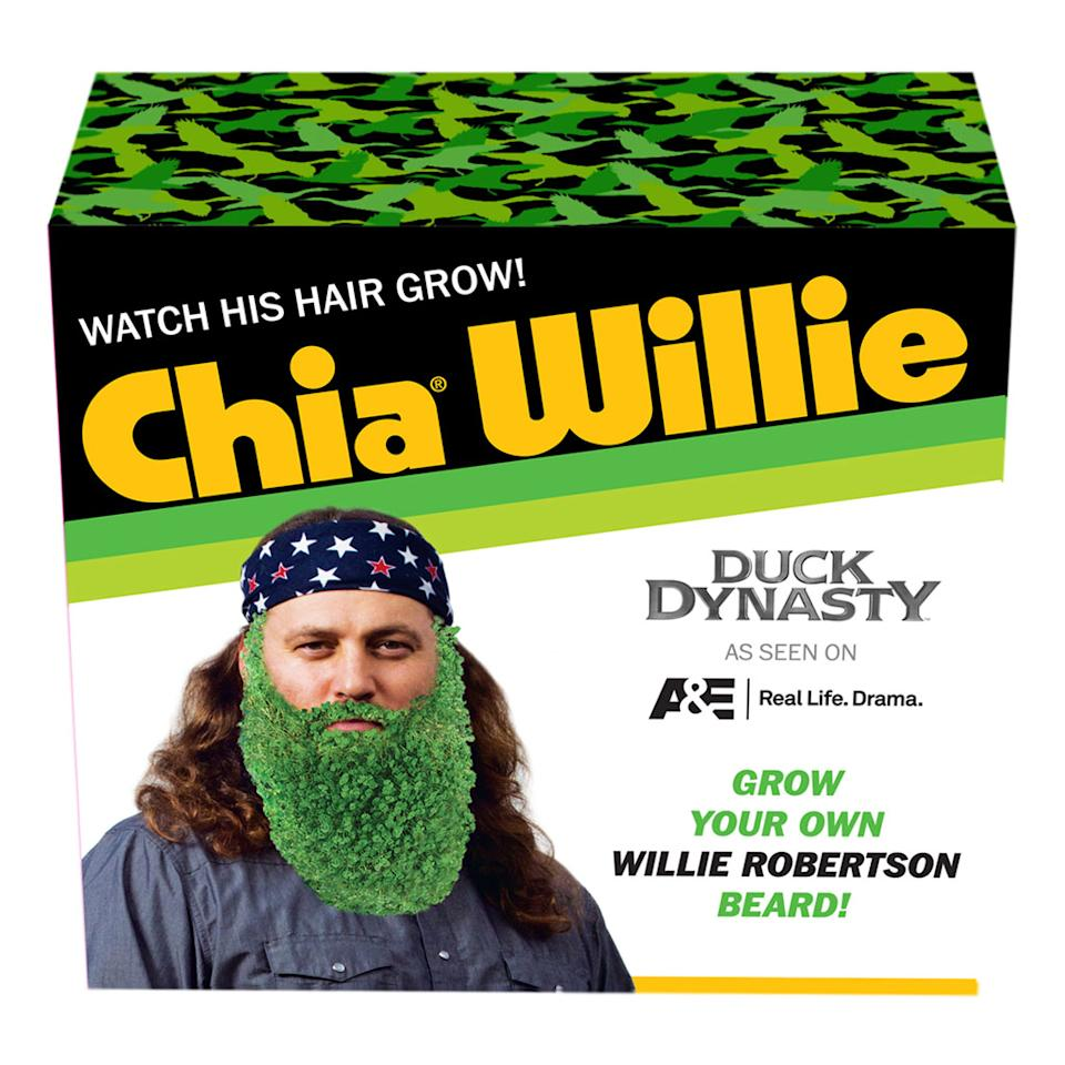 """<b>GENERAL TV-RELATED GOODIES<br><br>""""Duck Dynasty"""" Willie Robertson Chia Pet</b> <br><br>Chia Pets have paid homage to everyone from Scooby-Doo to Hello Kitty, but with this, the Willie Robertson version, Chia Pet has finally found its purpose.<br><br><a href=""""http://shop.history.com/duck-dynasty-willie-robertson-chia-pet/detail.php?p=379520"""">Shop.History.com</a>, $29.95"""