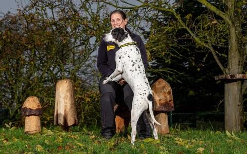 Jack The English pointer with Natalie Waller, Dogs Trust - Credit: Charlotte Graham/CAG Photography Ltd