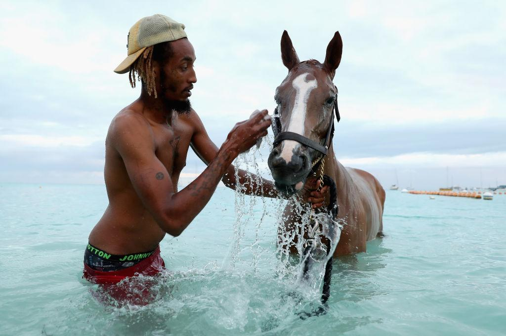 <p>Stable workers wash the racehorses of the Barbados Garrison Savannah in the Caribbean early in the morning on March 22, 2019 in Bridgetown, Barbados. The Garrison Savannah has been the home of horse racing in Barbados since 1845. The race course is known internationally for the annual Barbados Gold Cup for Thoroughbreds which takes place on the six furlong track around the perimeter of the green. (Photo from Chris Jackson/Getty Images) </p>
