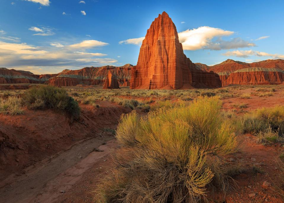 """<p><strong>Best camping in Utah:</strong> Fruita Campground, Capitol Reef National Park</p> <p>The unsung gem of the <a href=""""https://www.cntraveler.com/story/a-snap-guide-to-road-tripping-through-the-mighty-five?mbid=synd_yahoo_rss"""" rel=""""nofollow noopener"""" target=""""_blank"""" data-ylk=""""slk:Utah national parks is"""" class=""""link rapid-noclick-resp"""">Utah national parks is</a>, hands down, Capitol Reef. Camp among ochre-colored cliffs, dramatic sunsets, and picturesque slot canyons. Right in the historic district of Fruita, these 71 developed sites provide excellent canyon views—and are walking distance from the Gifford Homestead's famous pie shop.</p>"""