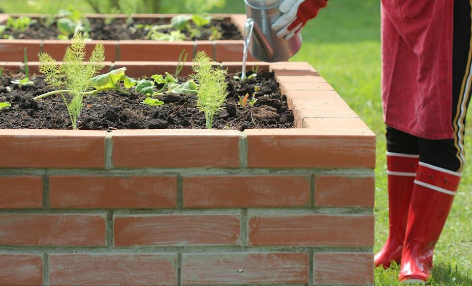 <p>There's no reason why durable bricks can't be used as garden beds. You can even paint them in bold hues if you're really up for showing off your creativity.</p>