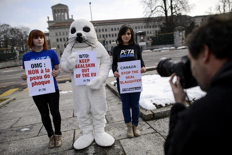 People for the Ethical Treatment of Animals (PETA) activists stage a demonstration against seal hunting in front of the World Trade Organization headquaters on February 18, 2013 in Geneva (AFP Photo/Fabrice Coffrini)
