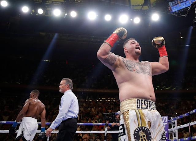 Andy Ruiz Jr. entered boxing history on Saturday. (AP Photo/Frank Franklin II)
