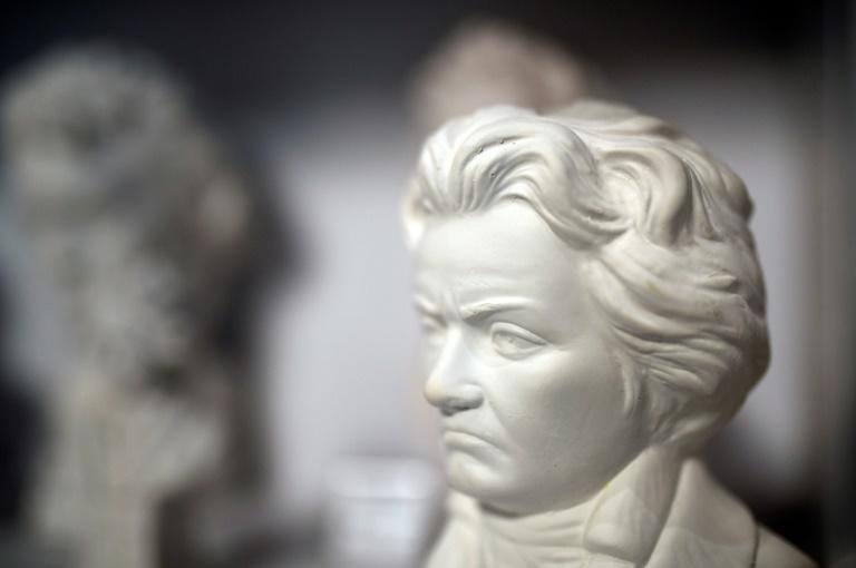 The classical music world has often speculated what Ludwig van Beethoven (1770-1827) would have gone on to write after his monumental Ninth Symphony (AFP/INA FASSBENDER)