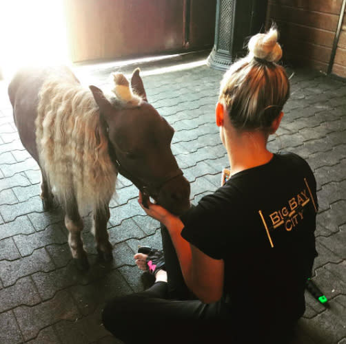 "<p>The <em>Big Bang Theory</em> star is so crazy about her newly adopted dwarf horse, Shmooshy, that she likes the two of them to wear their hair the same way: ""Top knot goals."" (Photo: <a href=""https://www.instagram.com/p/BU0G1ihlWNl/"" rel=""nofollow noopener"" target=""_blank"" data-ylk=""slk:Kaley Cuoco via Instagram"" class=""link rapid-noclick-resp"">Kaley Cuoco via Instagram</a>) </p>"