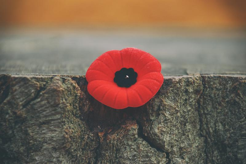 Remembrance Day 2018  - Page 4 A9c786e0425610dc6d85f5a72edc9c70