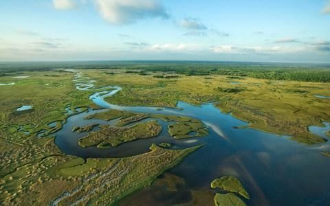 Aerial view of the Everglades - Credit: Getty