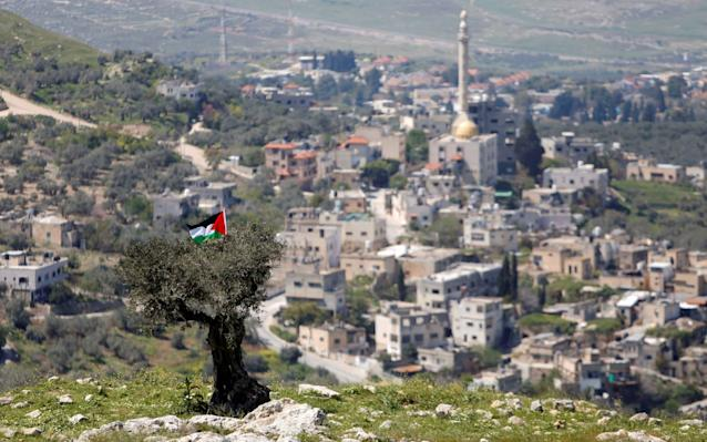 A Palestinian flag hangs on a tree during a protest against Jewish settlements in An-Naqura village near Nablus in the West Bank - REUTERS/Raneen Sawafta