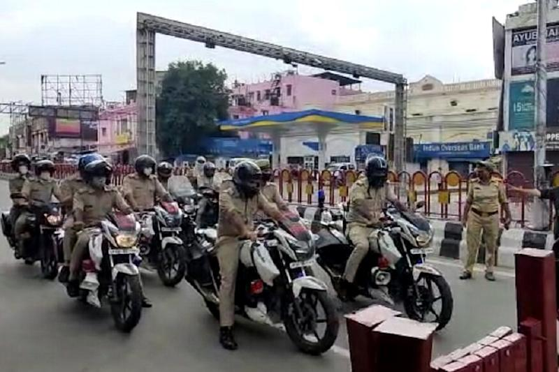 As Locusts Enter Lucknow, Residents Bang Utensils, Cops Switch on Hooters & Sirens to Drive Away Swarm