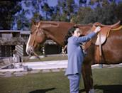 """<p>Elizabeth Taylor grew up as a skilled equestrian, which came in handy when she starred in <em>National Velvet </em>as a child. The actress bonded with her costar, King Charles, so much so that MGM bought the show jumper as a 13th <a href=""""https://www.horseandhound.co.uk/features/national-velvet-why-its-essential-viewing-for-all-horse-lovers-video-518955"""" rel=""""nofollow noopener"""" target=""""_blank"""" data-ylk=""""slk:birthday present"""" class=""""link rapid-noclick-resp"""">birthday present</a> for Elizabeth.</p>"""