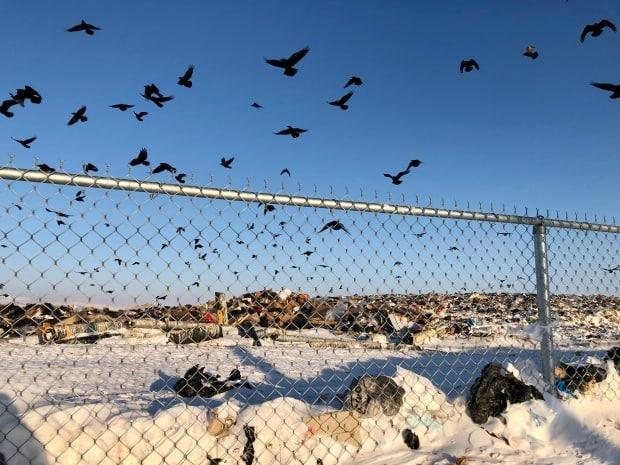 The landfill in Iqaluit. The city is working to open a new landfill at a different site. This one is located close to the ocean.  (Beth Brown/CBC - image credit)