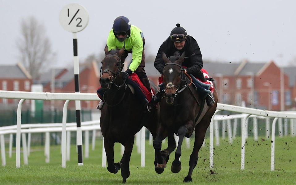 Epatante (left) and Altior (right) had a gallop at Newbury on Tuesday - PA