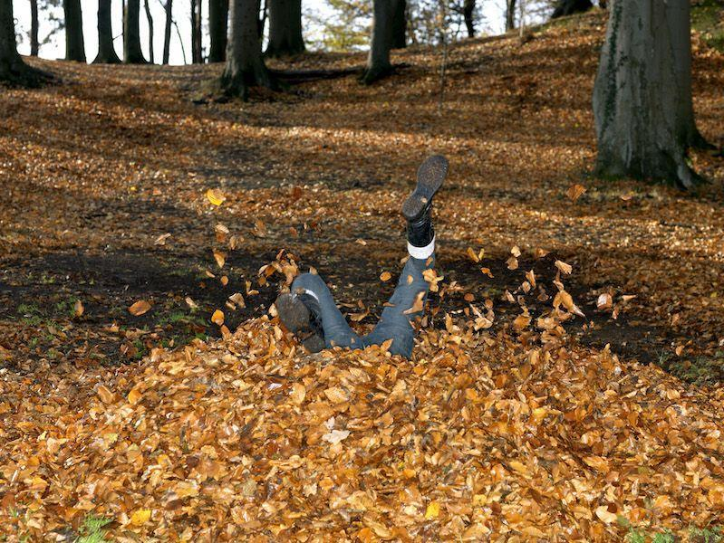 <p>There are always spiders and ticks (if not rats) lying in wait in the leaf pile. You're welcome. </p>