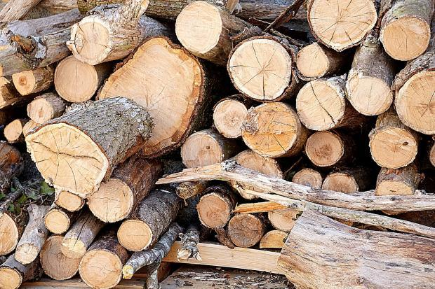Outlook for Wood Products Industry: Ample Room for Growth