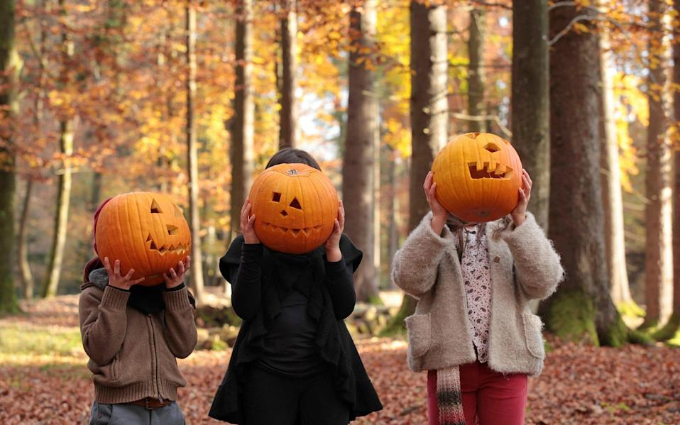 Children with pumpkins in front of their faces - susan.k./Getty Images Contributor