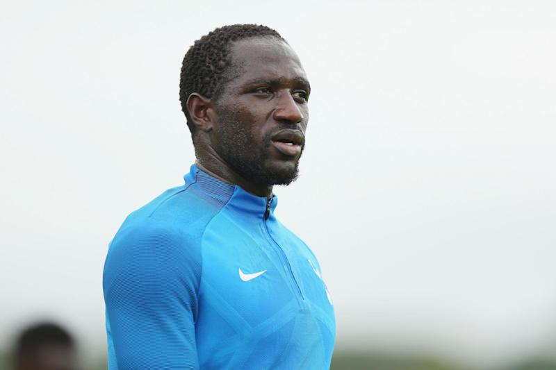 Sidelined: Sissoko has struggled to establish himself as a regular at Tottenham: Tottenham Hotspur FC via Getty Images