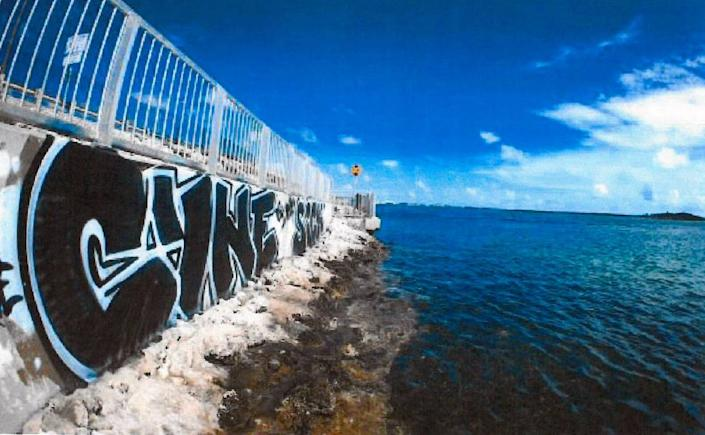 """Cyne"" has been spray-painted on seawalls and bridges over the past few years in the Lower Florida Keys."