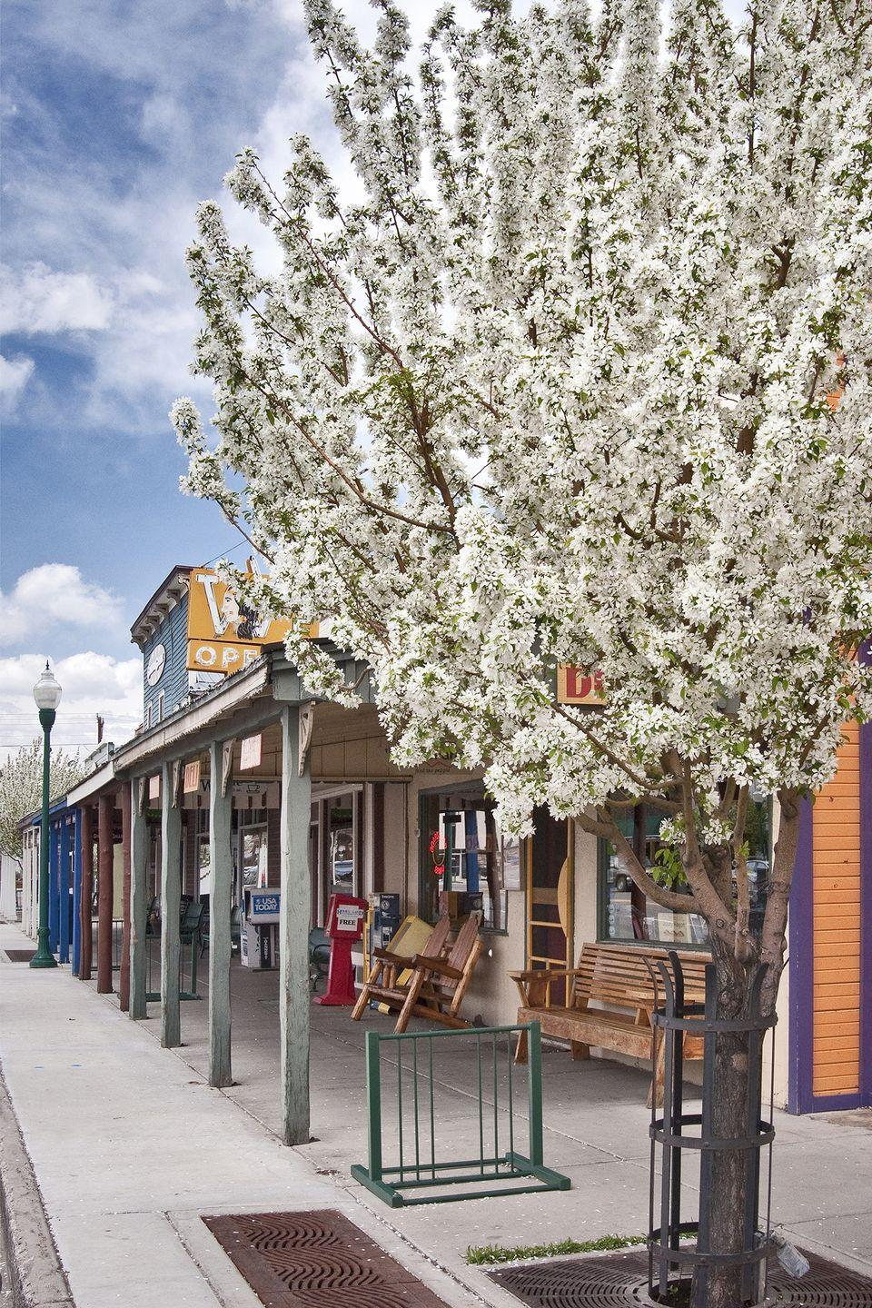 <p>With endless things to do—trying local cuisine, visiting historical sites, shopping, or just walking around with a coffee in hand—there's plenty to keep you busy for the day in a small town. </p>