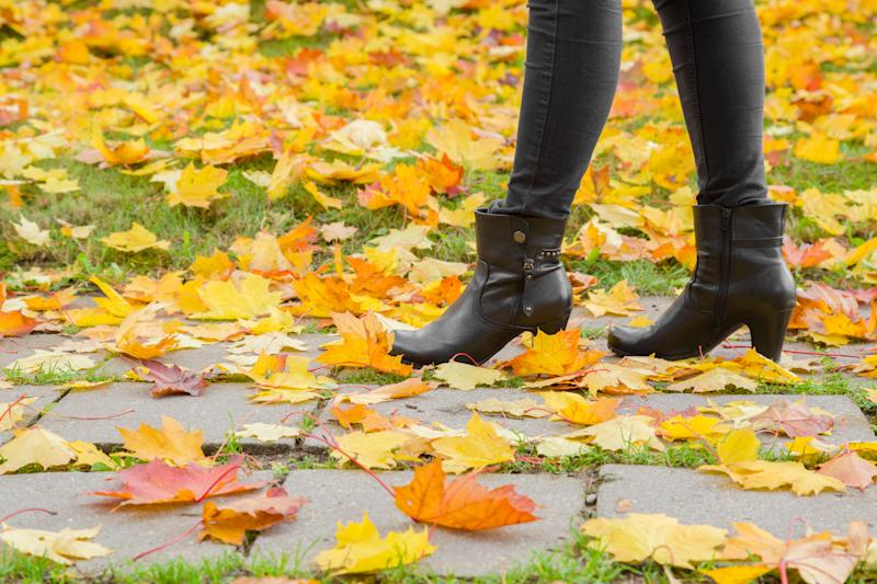 Young woman's legs in black leather boots walking in autumn day. Sidewalk covered with fallen colorful, fresh and lush maple leaves. Side view.