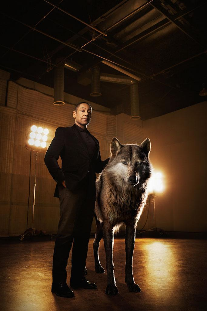 "<p>The <i>Breaking Bad</i> standout voices the alpha-male wolf who leads Mowgli's new pack. ""He brought a really cool, not obvious performance to it,"" <a href=""http://www.people.com/article/jungle-book-disney-scarlett-johansson-idris-elba"" rel=""nofollow noopener"" target=""_blank"" data-ylk=""slk:Favreau told People"" class=""link rapid-noclick-resp"">Favreau told <i>People</i></a>. ""There's a certain gentleness to him, but he also has power."" </p>"