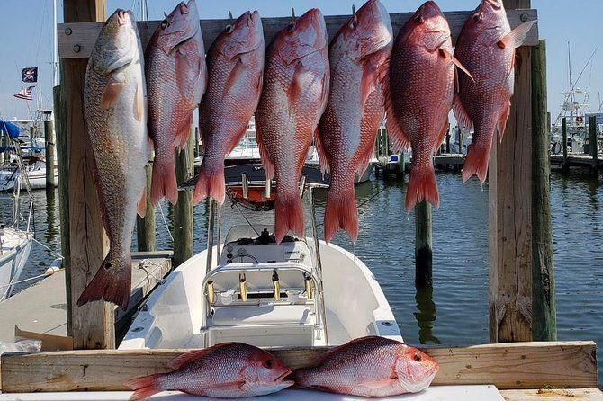 "<p><strong><a href=""https://www.viator.com/tours/Biloxi/Half-Day-Fishing-Charter/d22663-106183P1"" rel=""nofollow noopener"" target=""_blank"" data-ylk=""slk:Half Day Fishing Charter"" class=""link rapid-noclick-resp"">Half Day Fishing Charter</a></strong></p><p><strong>Biloxi, Mississippi</strong></p><p>Fishing enthusiasts love this experience, which allows you to spend half a day exploring the Gulf Coast on a private charter. The captain will take you to the exact right spots to catch local species and you may even catch a glimpse of dolphins. </p>"