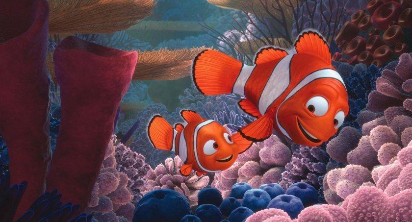 Still from the Disney movie Finding Nemo - Mandatory Credit: Photo by Moviestore/Shutterstock (1598801a)