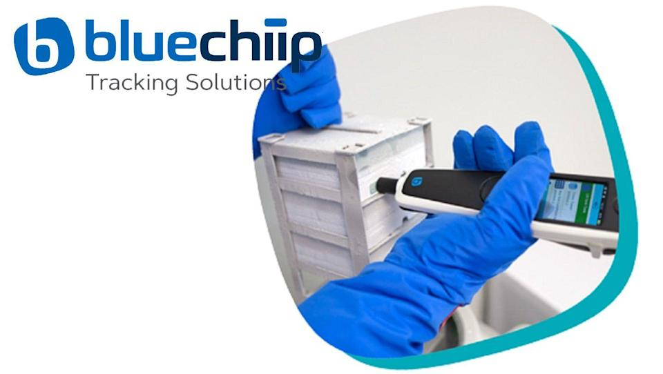 Bluechiip Ltd