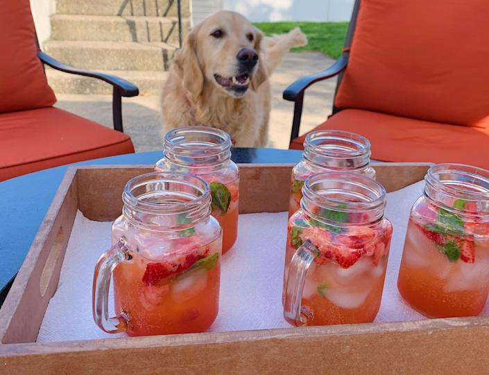 Sadly, the cute dog does not come with the cocktail if you make it at home. (Photo: Lindsay Holmes)