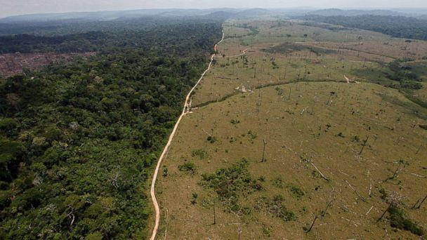 PHOTO: A deforested area near Novo Progresso in Brazil's northern state of Para, Sept. 15, 2009. (Andre Penner/AP, FILE)