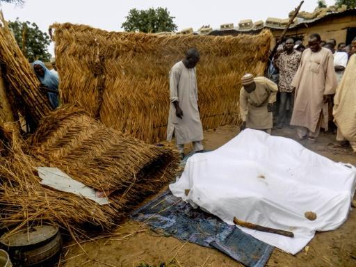16 killed in double suicide attack in NE Nigeria