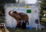 "Volunteers paint an image of an elephant named ""Kaavan""on a crate to be used to be transported Kaavan to a sanctuary in Cambodia, at the Maragzar Zoo in Islamabad, Pakistan, Friday, Nov. 27, 2020. Iconic singer and actress Cher was set to visit Pakistan on Friday to celebrate the departure of Kaavan, dubbed the ""world's loneliest elephant,"" who will soon leave a Pakistani zoo for better conditions after years of lobbying by animal rights groups and activists. (AP Photo/Anjum Naveed)"