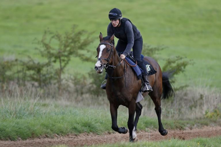 Candida Baker exercises horse on the gallops near the Robins Farm stables she bought with her husband