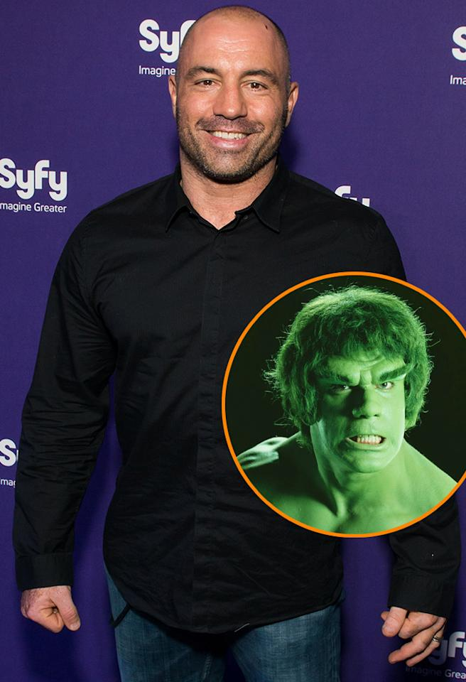 <strong>Joe Rogan:</strong> I'm a big fan of the Hulk. He's awesome. Everybody wants to be in a situation where the evil people of the world are coming down on you and then all of a sudden, you turn into a giant green dude that can f--k up everything.
