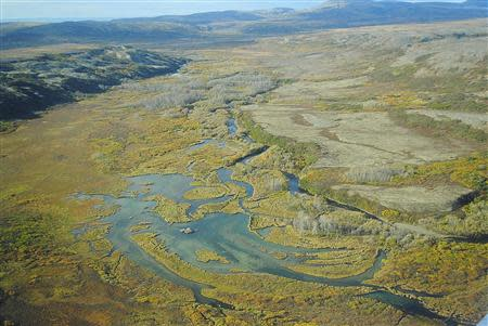 The Upper Tularik Floodplain in the Bristol Bay watershed in Alaska is seen in an undated handout picture provided by the Environmental Protection Agency (EPA). REUTERS/Environmental Protection Agency/Handout