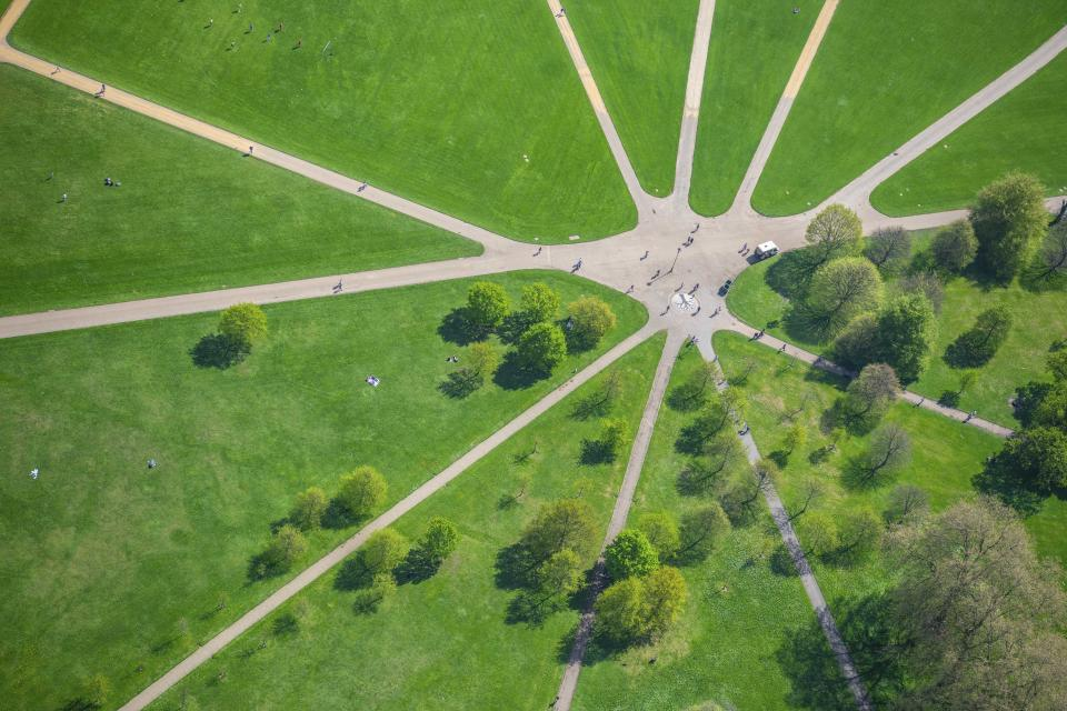 """It's springtime in London: a view of the """"Reformers Tree"""" in Hyde Park, by Harry Gray. (Photo: Jason Hawkes/Caters News)"""