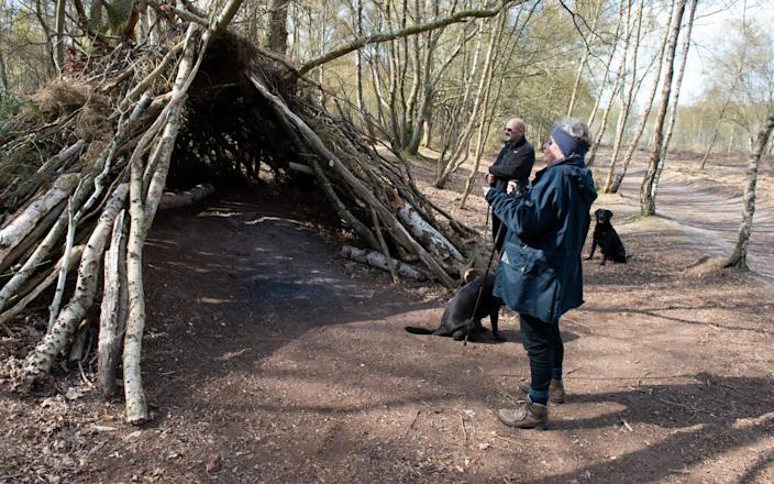 Surrey County Council has repeatedly ransacked the three-year-old boy's woodland den - because the sign 'excluded' other kids - SWNS