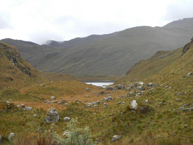 The upper Tarhuish valley at Laguna Udrecocha, Puna, in Peru, where the rubber frogs were found is 3,936 metres above sea level