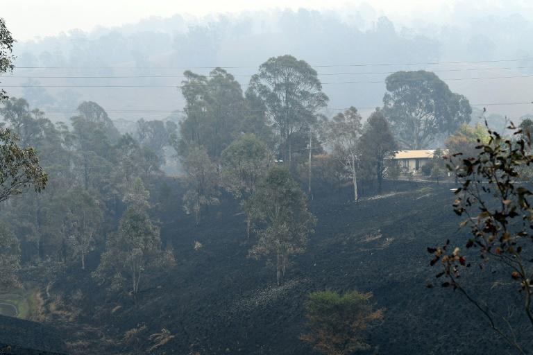 Swathes of land have been left charred by bushfires in Australia's New South Wales