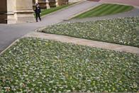 <p>Flower tributes to the Duke of Edinburgh are laid out on the lawn. </p>