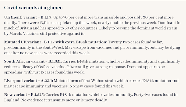 Covid variants at a glance