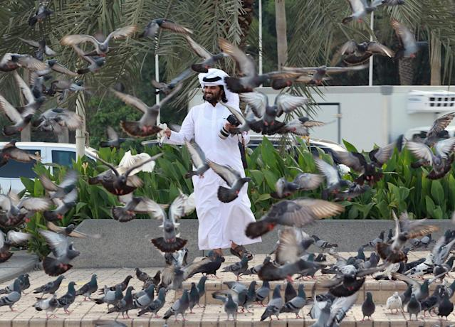 <p>A man looks at pigeons at Souq Waqif market in Doha, Qatar, June 6, 2017. (Photo: Naseem Zeitoon/Reuters) </p>